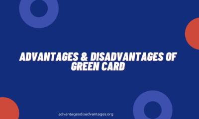 Advantages and Disadvantages of Green Card