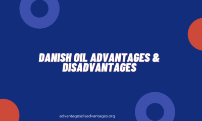 Danish Oil Advantage and Disadvantage