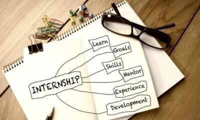 What Are The Advantages and Disadvantages Of Externships For Your Professional Career?